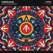 Peru (LUM!X Remix) by Tungevaag