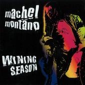 Wining Season by Machel Montano