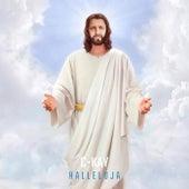 Halleluja de C-Kay
