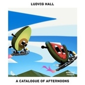 A Catalogue of Afternoons de Ludvig Hall