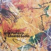 Pra Iluminar (Ao Vivo) by Leila Pinheiro