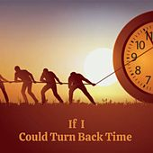 If I Could Turn Back Time de Ferlin Husky, Waylon Jennings, Don Gibson, Willie Nelson, Tex Ritter, Billy Joe Royal, Boxcar Willie, Merle Haggard