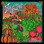 Peace Love & Unity (Live) by Fortunate Youth
