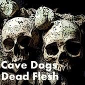 Dead Flesh de The Cavedogs
