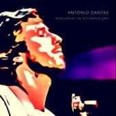 Rascunhos em Decomposição de Antonio Dantas