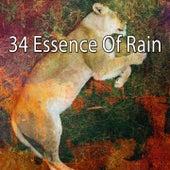 34 Essence of Rain de Thunderstorm Sleep