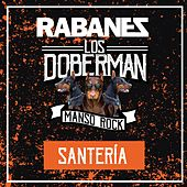 Santeria (Cover) de Los Rabanes