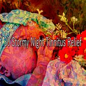 30 Stormy Night Tinnitus Relief by Rain Sounds and White Noise