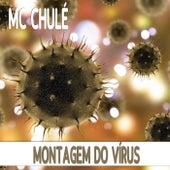 Montagem do Vírus de MC Chulé