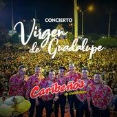 Concierto Virgen de Guadalupe (En Vivo) de Orquesta Caribeños de Guadalupe