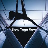 Slow Yoga Flow by Various Artists