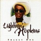 Shaggy Dog by Lightnin' Hopkins