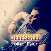 Liebesbrief (Radio Edit) by Andre'Fenna