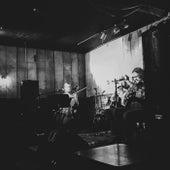 Bluegrass Adieu: Live in Lexington, 5/18/16 de Wooden Wand