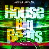 House BigBeats, Vol. 1 de Various Artists