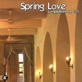 SPRING LOVE COMPILATION VOL 135 de Tina Jackson