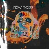 Paid de New Noize