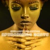 Aphrodisiac Beats (Chillout Selection) de Various Artists
