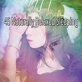 45 Naturally Relaxed Sleeping by Sleepy Night Music