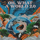 Oh, What a World 2.0 (Earth Day Edition) by Kacey Musgraves