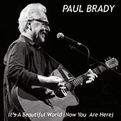 It's a Beautiful World Now You Are Here de Paul Brady