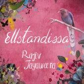 Ellstandissa by Rajiv Jayaweera
