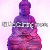 54 Life Calming Auras de Zen Meditation and Natural White Noise and New Age Deep Massage