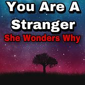 You Are A Stranger, She Wonders Why de DYNASTY