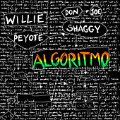 Algoritmo de Willie Peyote