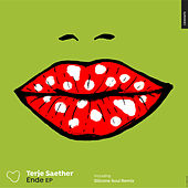 Ende EP by Terje Saether