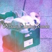 68 Baby Calming Sounds de Baby Sleep Sleep