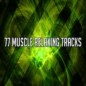 77 Muscle Relaxing Tracks by Massage Tribe