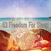 63 Freedom for Sle - EP by Sounds Of Nature