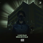 Ion.K.W.T.F.G.O by Kaneo Blak