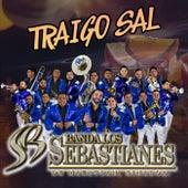 Traigo Sal by Banda Los Sebastianes