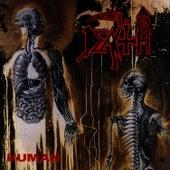 Human - Reissue von Death