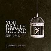 You Really Got Me (Acoustic Rough Mix) de George White Group