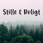 Stille og Roligt - Good vibes - Chill by Various Artists