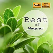 Best of Wagner by Various Artists