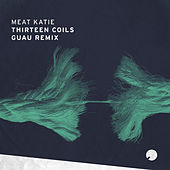 Thirteen Coils (Guau Remix) by Meat Katie