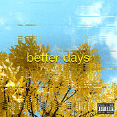 Better Days by Prince Fox