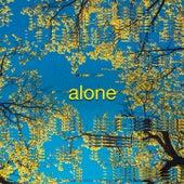 Alone von Prince Fox