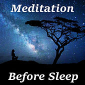 Meditation Before Sleep by Various Artists