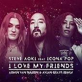 I Love My Friends (Armin van Buuren & Avian Grays Remix) van Steve Aoki