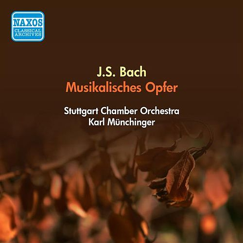 Bach, J.S.: Musical Offering, Bwv 1079 (Stuttgart Chamber Orchestra, Munchinger) (1955) by Karl Munchinger