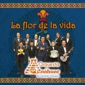 La Flor de la Vida de Orquesta Anahuac de Gerardo Arreguin
