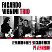 Pé Vermelho - Instrumental de Ricardo Vignini