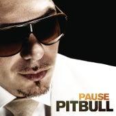 Pause von Pitbull
