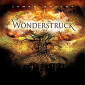 Wonderstruck - Position Music Orchestral Series Vol. 7 by James Dooley