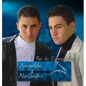 Rei do Transporte de Amarildo e Alexandre